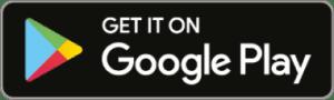 Download in Google Play Store EN